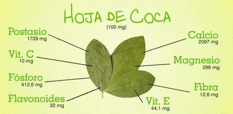 Coca Leaf Paste Inka, Strong 30x Pure 100% Natural